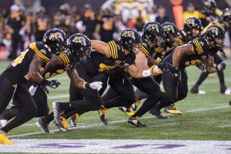 Ticats on the field