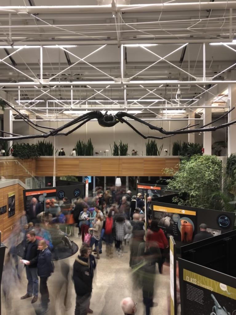 RBG Spiders Alive exhibit