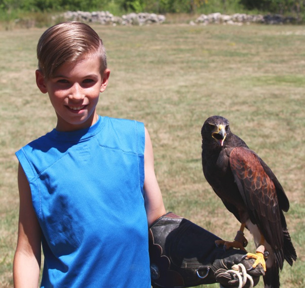 Birds of Prey with Young Boy