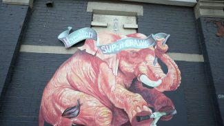 Supercrawl Elephant
