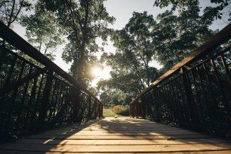 Felker's Falls Bridge