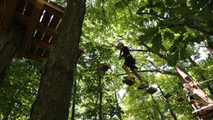 Climb the trees in a sky high adventure