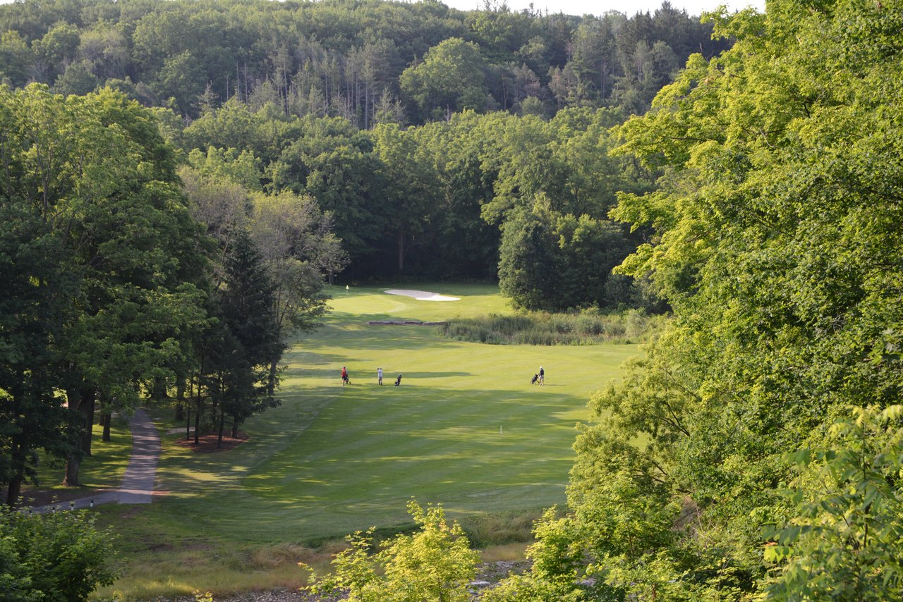 Kings Forest course