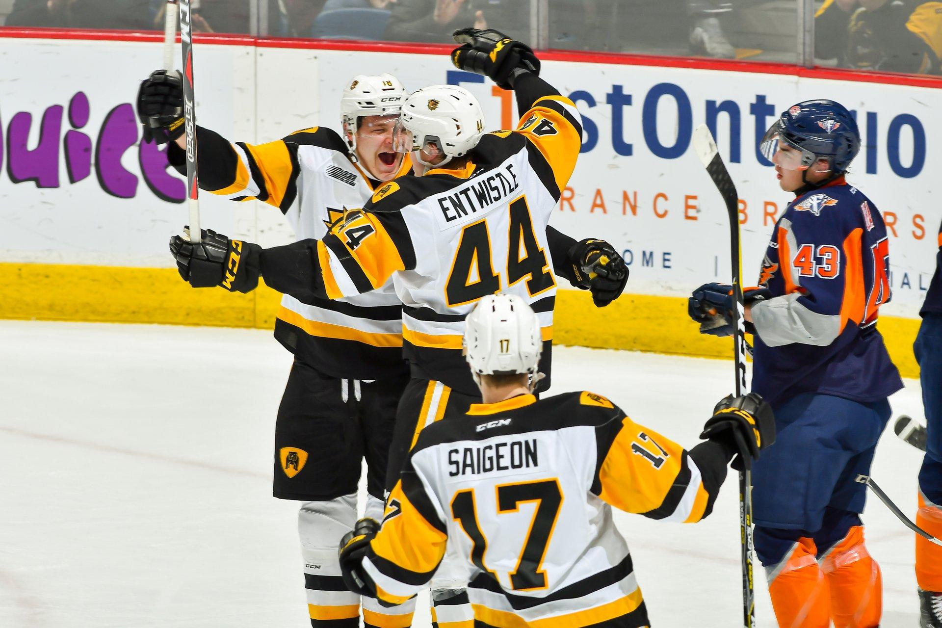 Hamilton Bulldogs Centre Ice