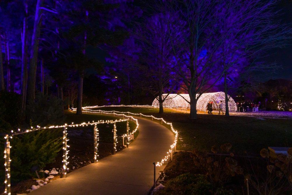 RBG at night with lights
