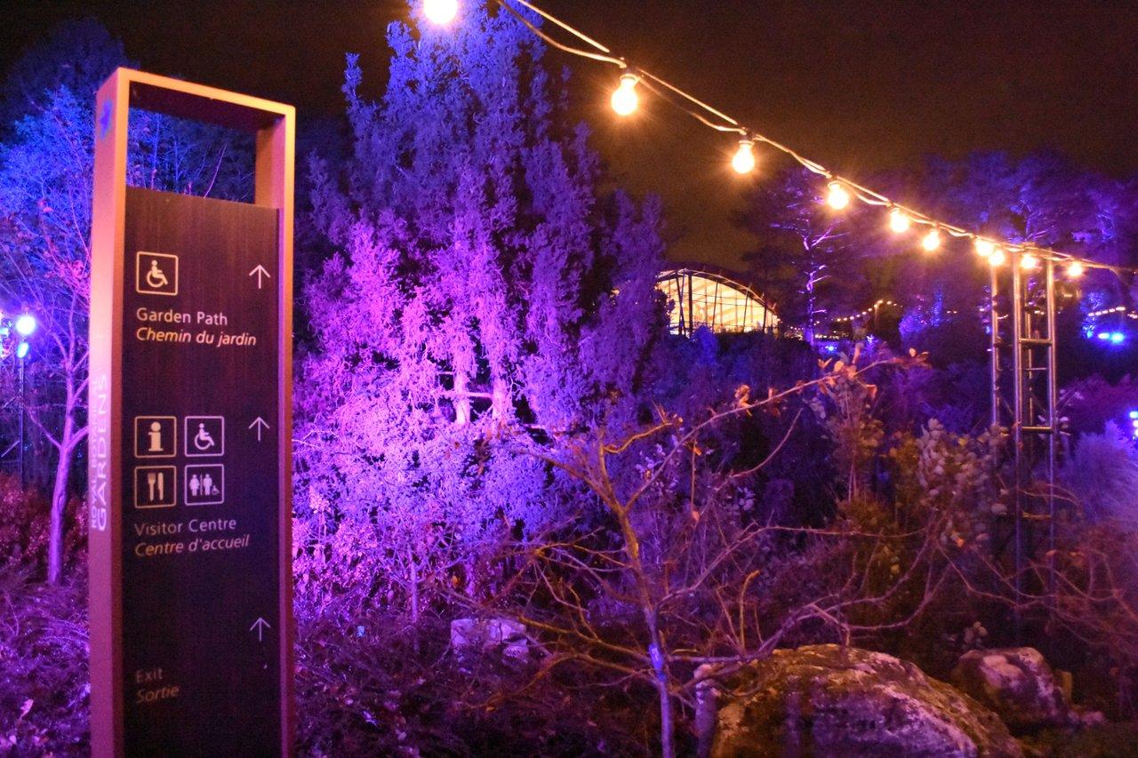 Winter lights at RBG