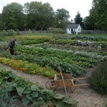 Dundurn Castle Kitchen Gardens