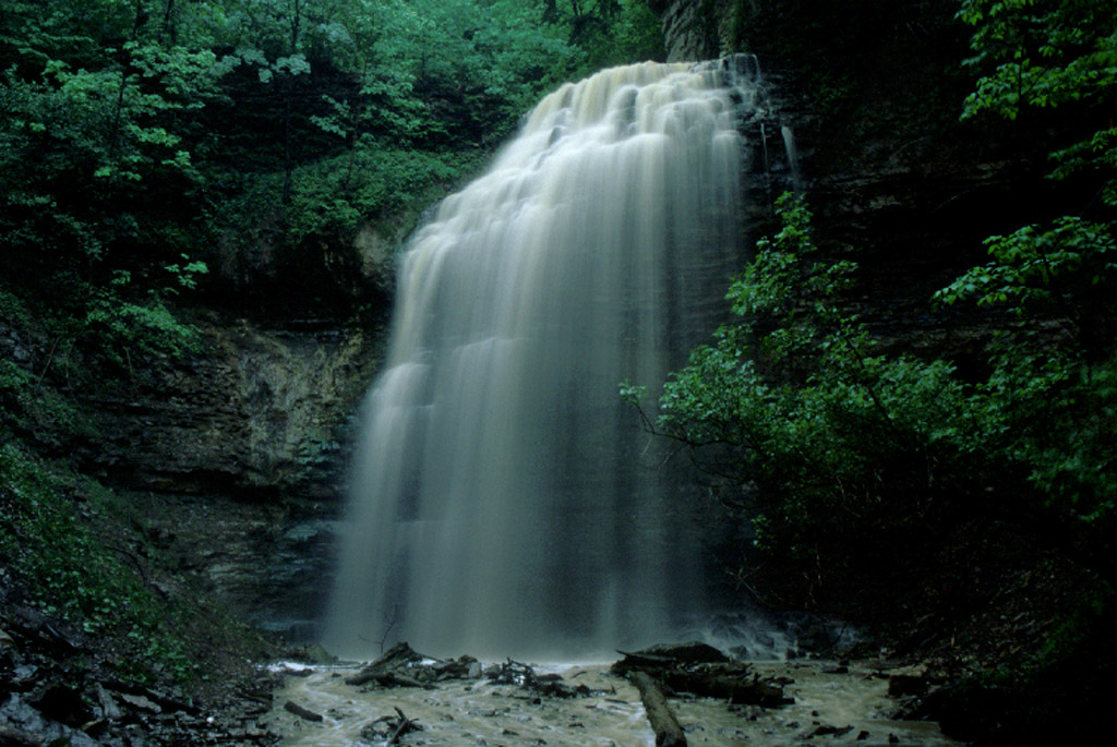 Waterfalls In Hamilton