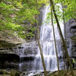 Waterfalls-Hamilton