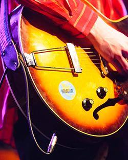 Harlan Pepper Guitar