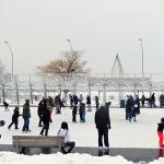 Winterfest 2015 - Skating