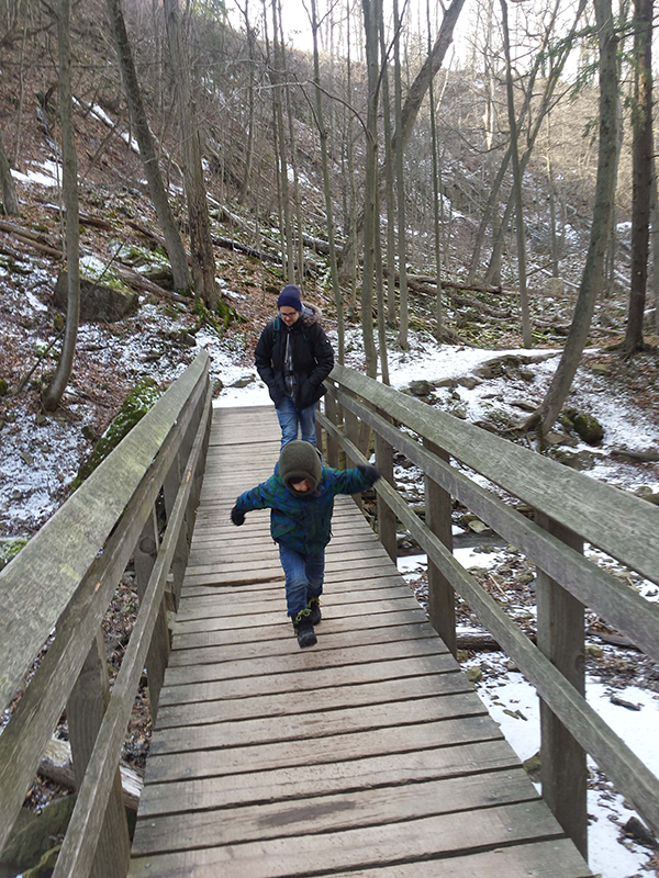 tiffany falls bridge