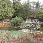 RBG - Rock Garden -
