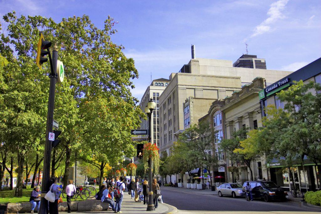 City Street 1