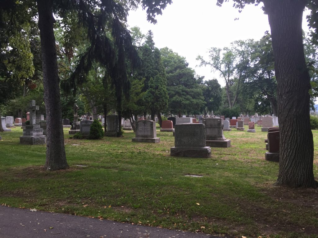 Hamilton Cemetery - gravestones
