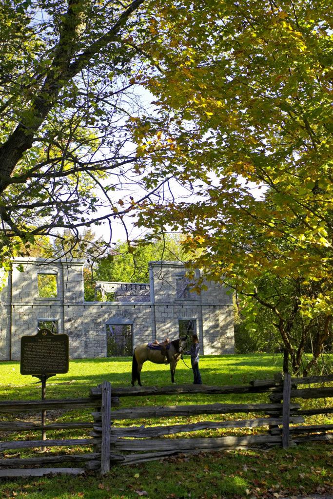 Hermitage Ruins Hamilton