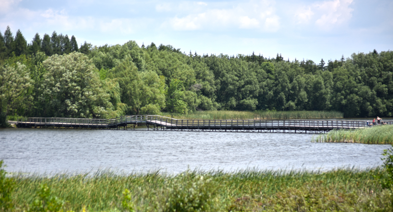 Valens-Lake-bridge-Hamilton