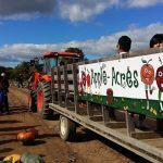 Frootogo apple wagon
