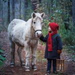 Westfield Heritage Village - Christmas in the Woods